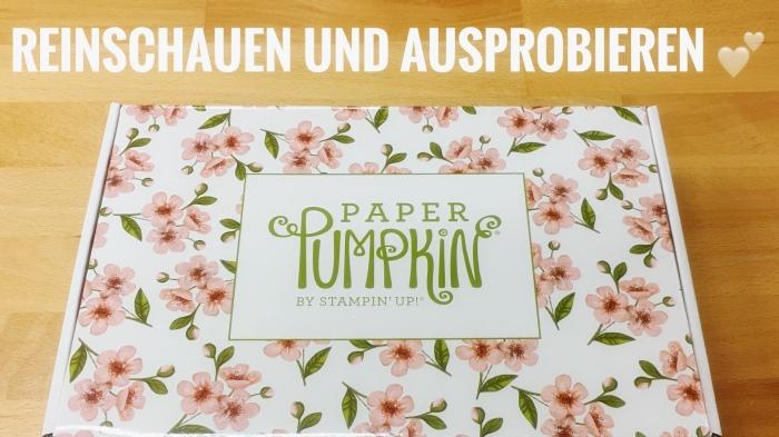 Reingelinst und ausprobiert – PaperPumpkin